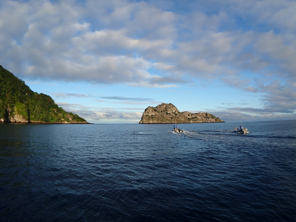コスタリカのココ島に行ってきました~!2019        COCO IS./COSTA RICA_e0184067_17325935.jpg