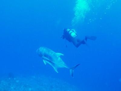 「太平洋側のポイント調査」_b0033573_19545855.jpg