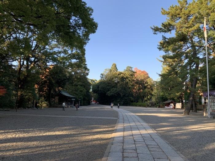 氷川神社_e0273004_13020527.jpg