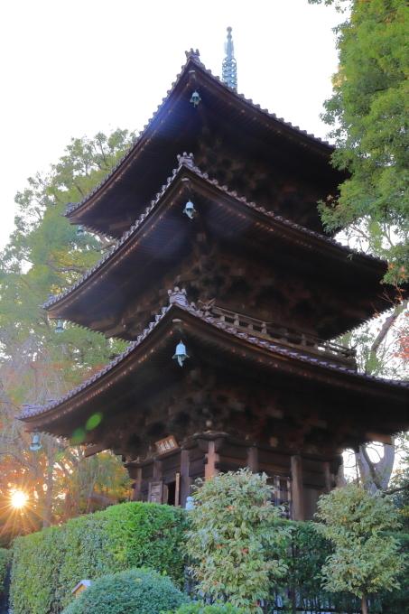 【椿山荘】文京区レトロ建物探訪 part 5_f0348831_08183242.jpg