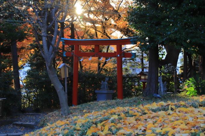 【椿山荘】文京区レトロ建物探訪 part 5_f0348831_08184225.jpg