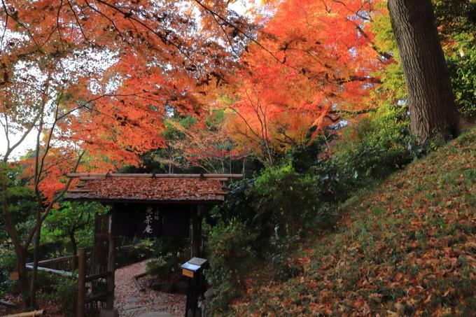 【椿山荘】文京区レトロ建物探訪 part 5_f0348831_08184808.jpg