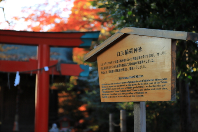 【椿山荘】文京区レトロ建物探訪 part 5_f0348831_08184862.jpg