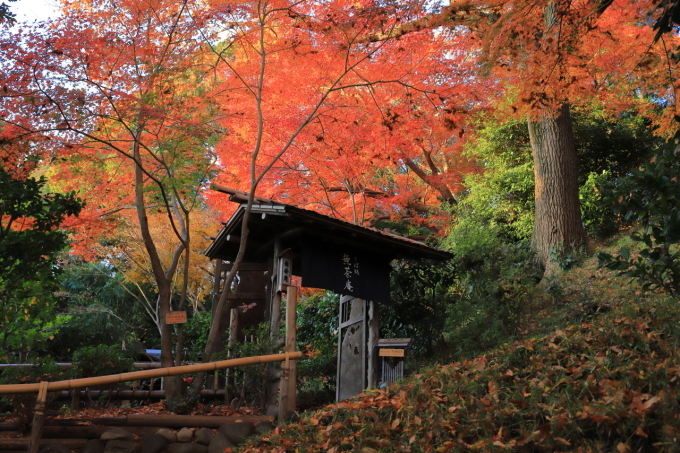 【椿山荘】文京区レトロ建物探訪 part 5_f0348831_08185324.jpg
