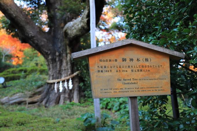 【椿山荘】文京区レトロ建物探訪 part 5_f0348831_08185438.jpg