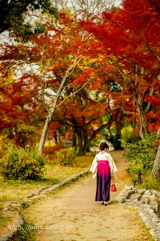 京都の秋2019(14)_d0108132_00133474.jpg