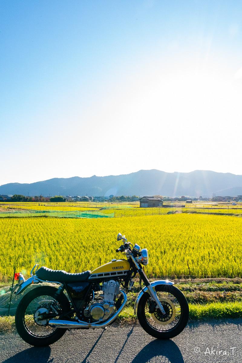 バイクは楽し!! YAMAHA SR400 -60-_f0152550_23245241.jpg