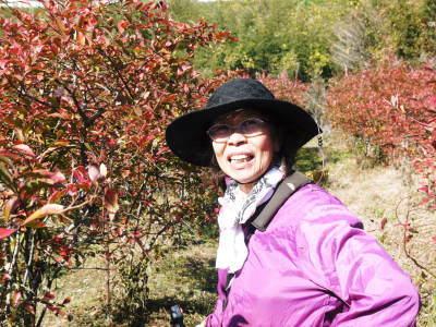 フレッシュブルーベリー 紅葉と冬の剪定開始!おしどり夫婦が元気に頑張っています(後編)_a0254656_18033924.jpg