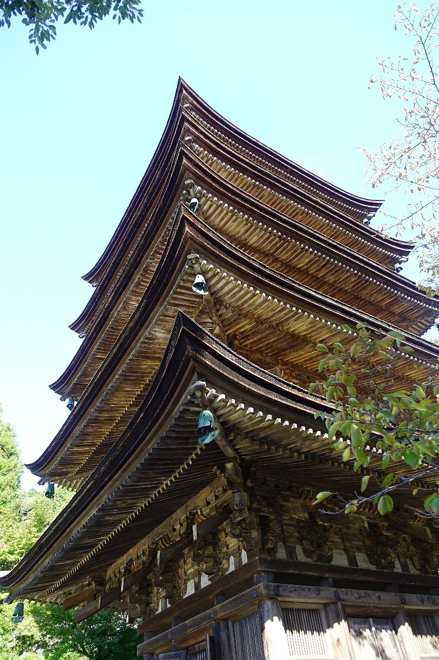 瑠璃光寺 五重塔と池泉庭園_c0112559_08213144.jpg