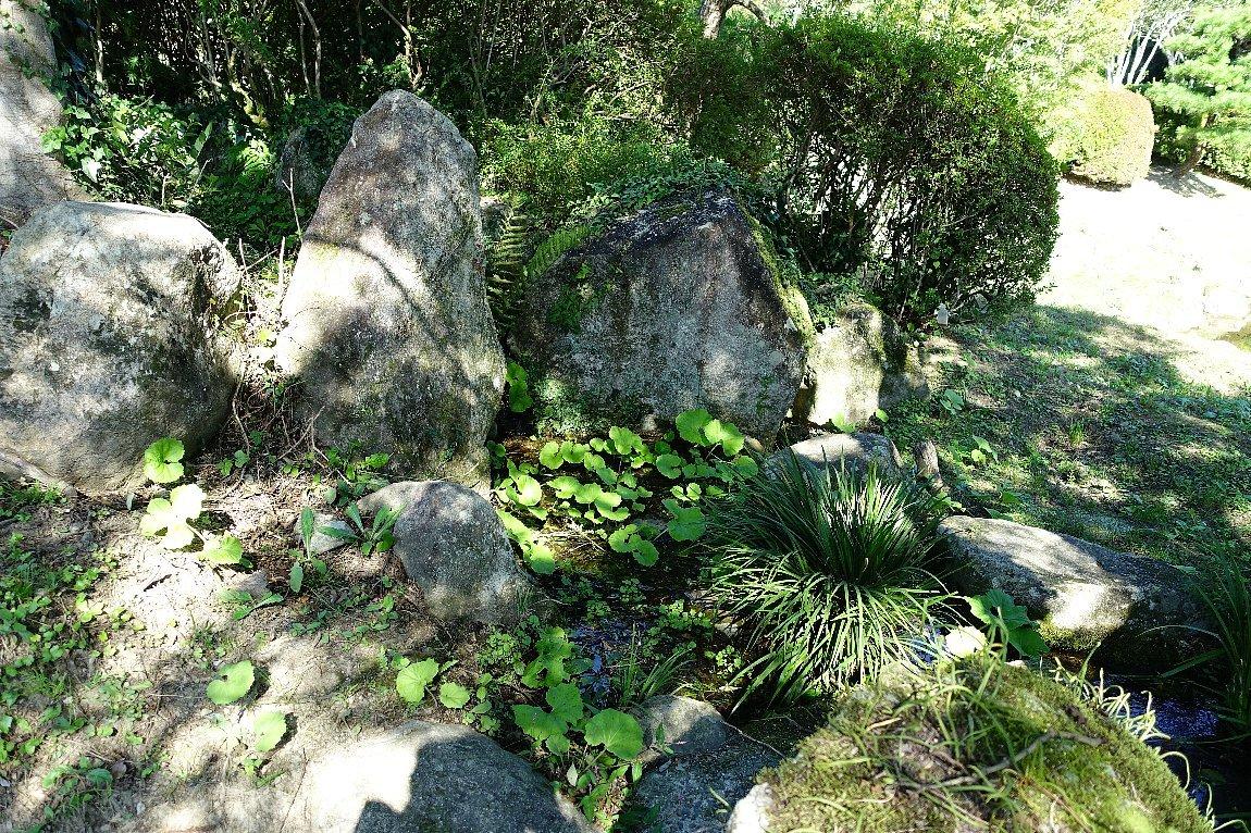瑠璃光寺 五重塔と池泉庭園_c0112559_08321958.jpg