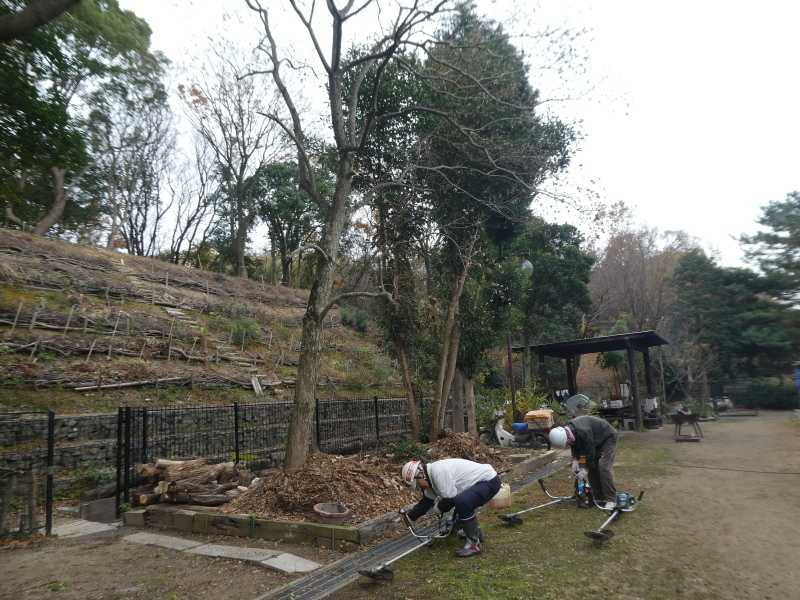 ササユリの道急斜面の草刈り・・・うみべの森_c0108460_18013433.jpg
