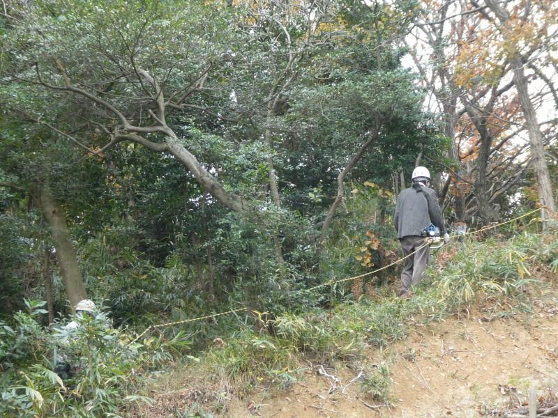 ササユリの道急斜面の草刈り・・・うみべの森_c0108460_18030191.jpg