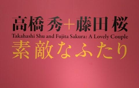 ◆『高橋秀+藤田桜 素敵な二人』展・・・伊丹市立美術館_e0154682_22245288.jpg