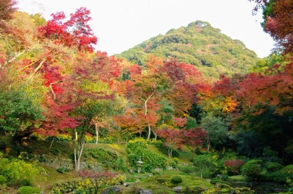 清水寺からのキャンプ_b0183583_01030410.jpeg