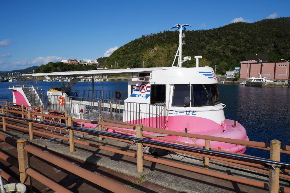 奄美大島の旅 2日目_c0252688_15364407.jpg