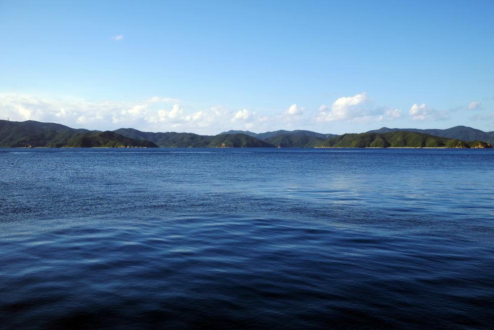 奄美大島の旅 2日目_c0252688_15371874.jpg
