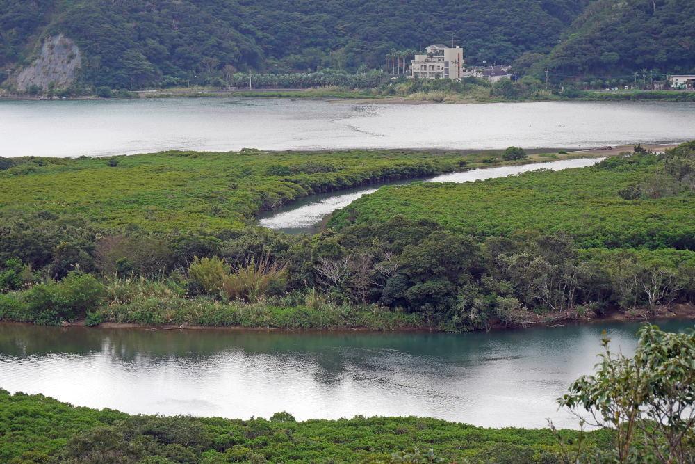奄美大島の旅 2日目_c0252688_15383936.jpg