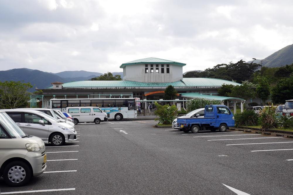 奄美大島の旅 2日目_c0252688_15421317.jpg