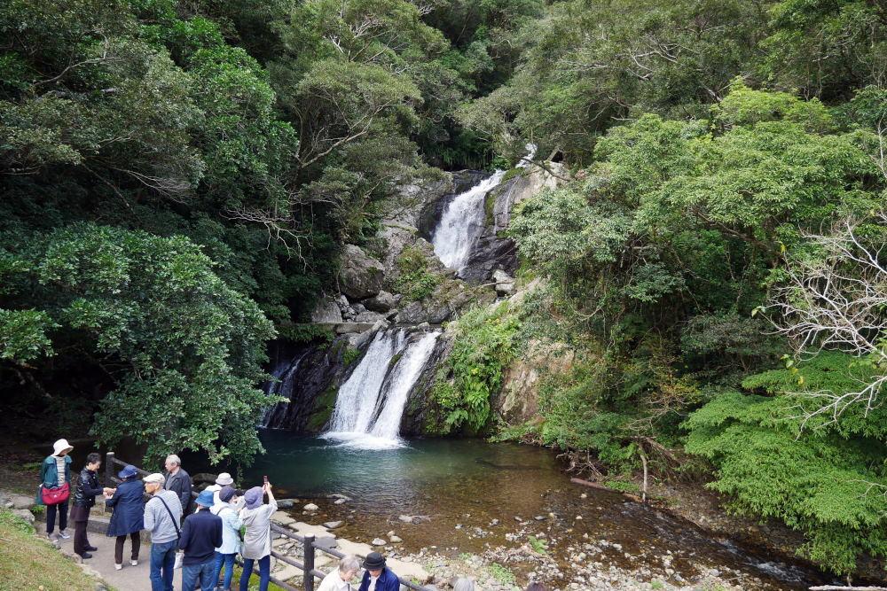 奄美大島の旅 2日目_c0252688_15431311.jpg