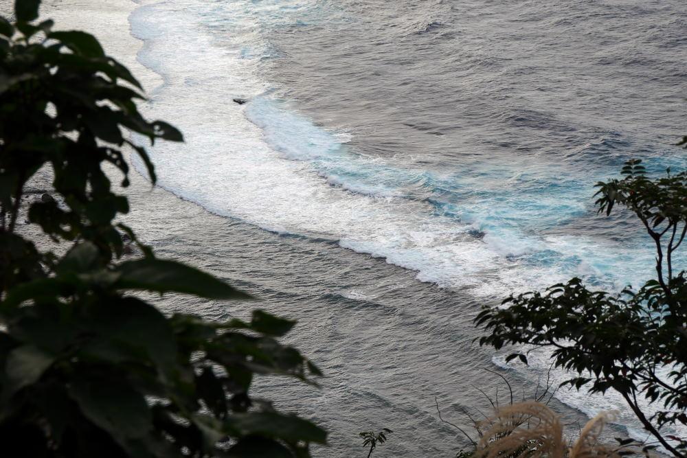 奄美大島の旅 2日目_c0252688_15441987.jpg