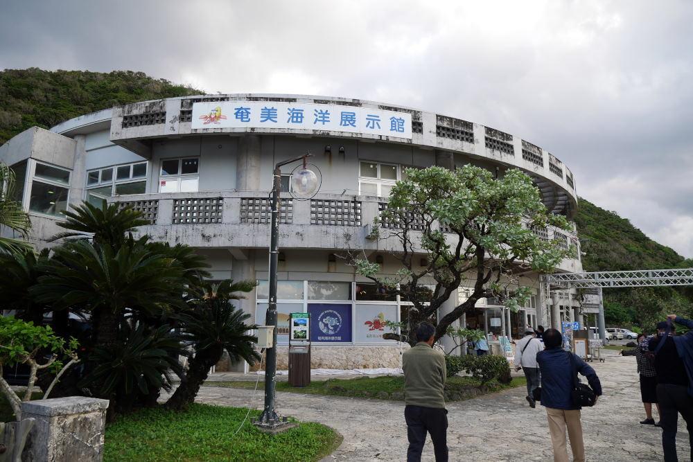 奄美大島の旅 2日目_c0252688_15443796.jpg
