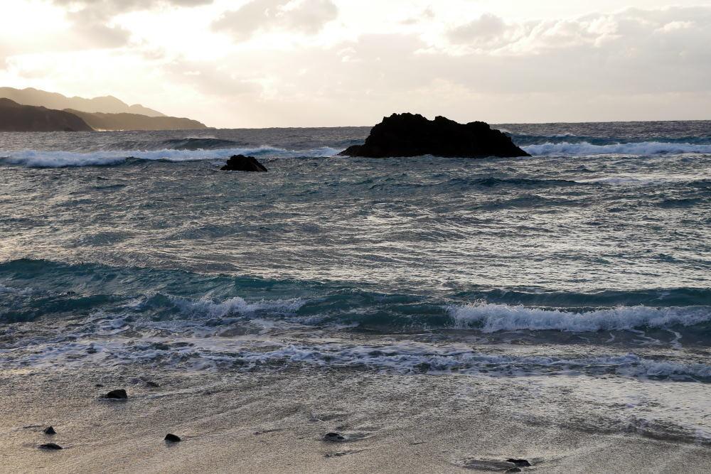 奄美大島の旅 2日目_c0252688_15454924.jpg