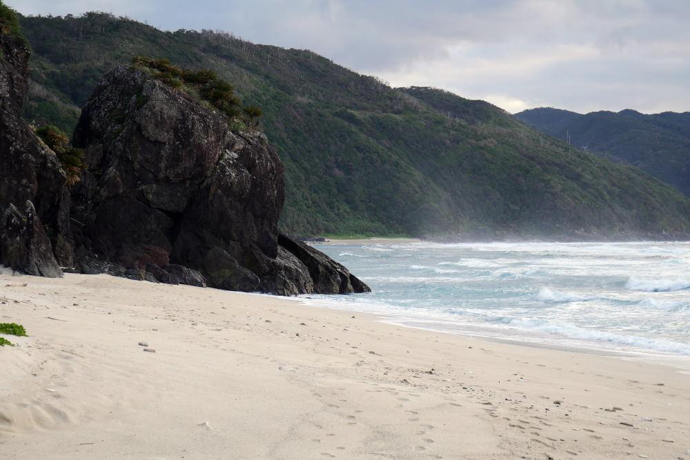 奄美大島の旅 2日目_c0252688_15460145.jpg