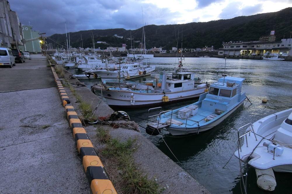奄美大島の旅 2日目_c0252688_15471861.jpg