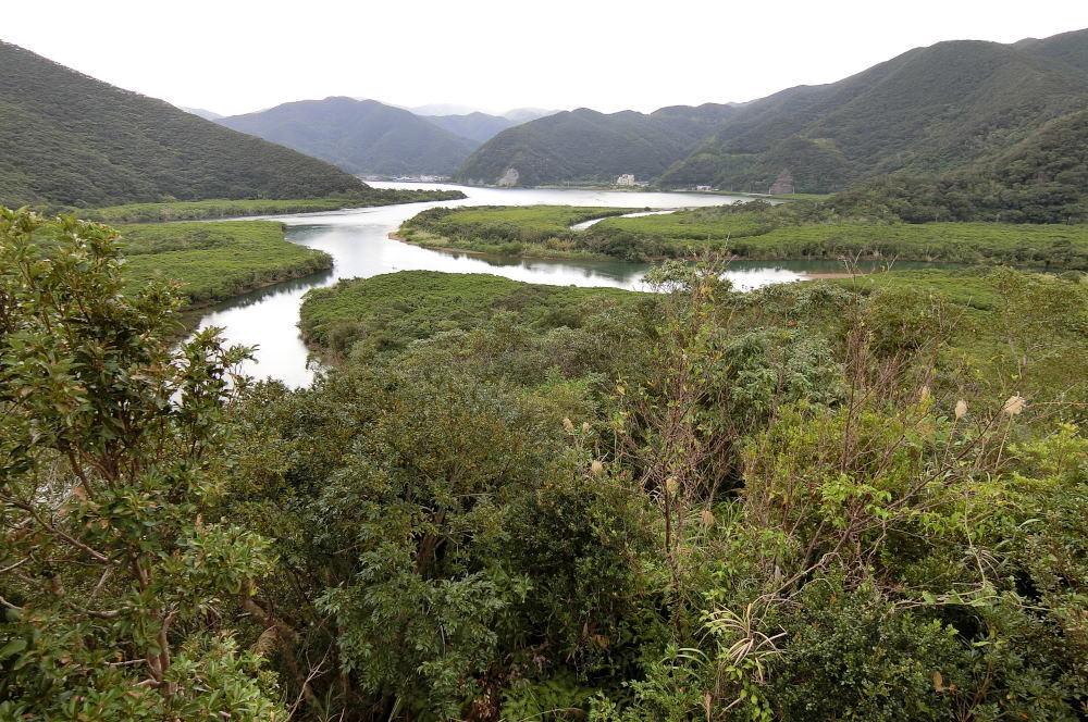 奄美大島の旅 2日目_c0252688_15473403.jpg