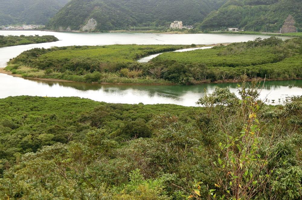 奄美大島の旅 2日目_c0252688_15474428.jpg