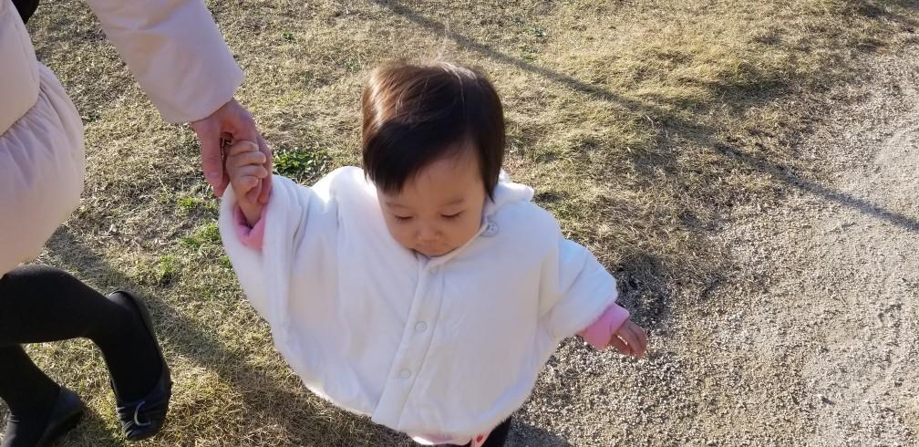 ♪愛孫と過ごす★令和元年千秋楽模様_d0162225_23375931.jpg