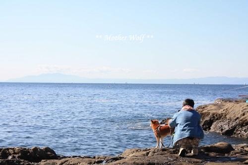 第26回マザーウルフ遠足 江ノ島レポート_e0191026_11322715.jpg