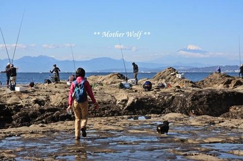 第26回マザーウルフ遠足 江ノ島レポート_e0191026_15091207.jpg