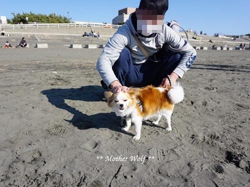 第26回マザーウルフ遠足 江ノ島レポート_e0191026_16004968.jpg
