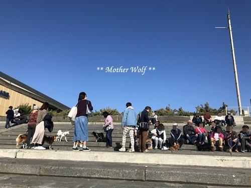 第26回マザーウルフ遠足 江ノ島レポート_e0191026_16480646.jpg