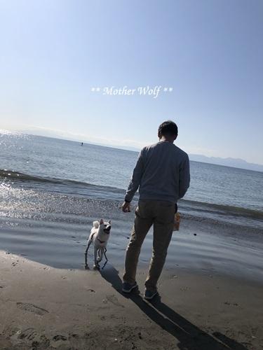 第26回マザーウルフ遠足 江ノ島レポート_e0191026_17325500.jpg