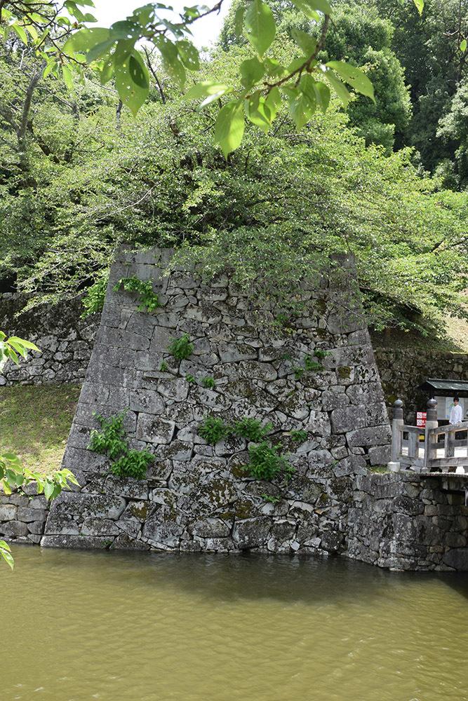 国宝・彦根城を歩く。 その1 <佐和口御門~表御殿>_e0158128_15254301.jpg