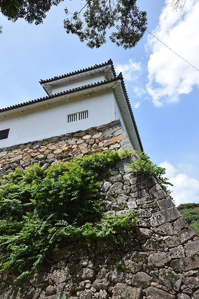 国宝・彦根城を歩く。 その2 <天秤櫓>_e0158128_15553702.jpg