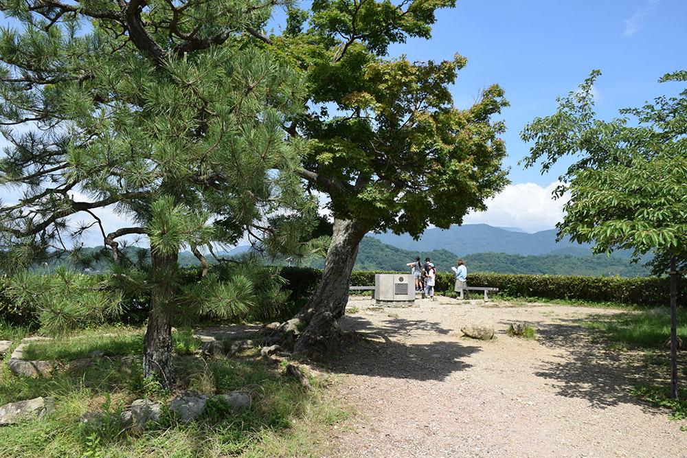 国宝・彦根城を歩く。 その3 <太鼓丸~太鼓門櫓~本丸>_e0158128_16481390.jpg