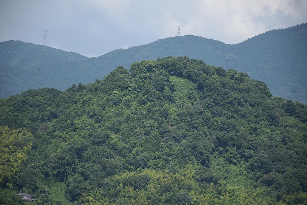 国宝・彦根城を歩く。 その4 <国宝天守>_e0158128_17364183.jpg