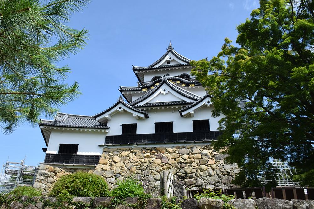 国宝・彦根城を歩く。 その5 <西の丸~出曲輪>_e0158128_17460899.jpg