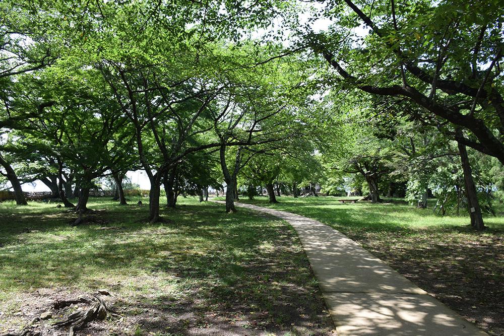 国宝・彦根城を歩く。 その5 <西の丸~出曲輪>_e0158128_17480308.jpg