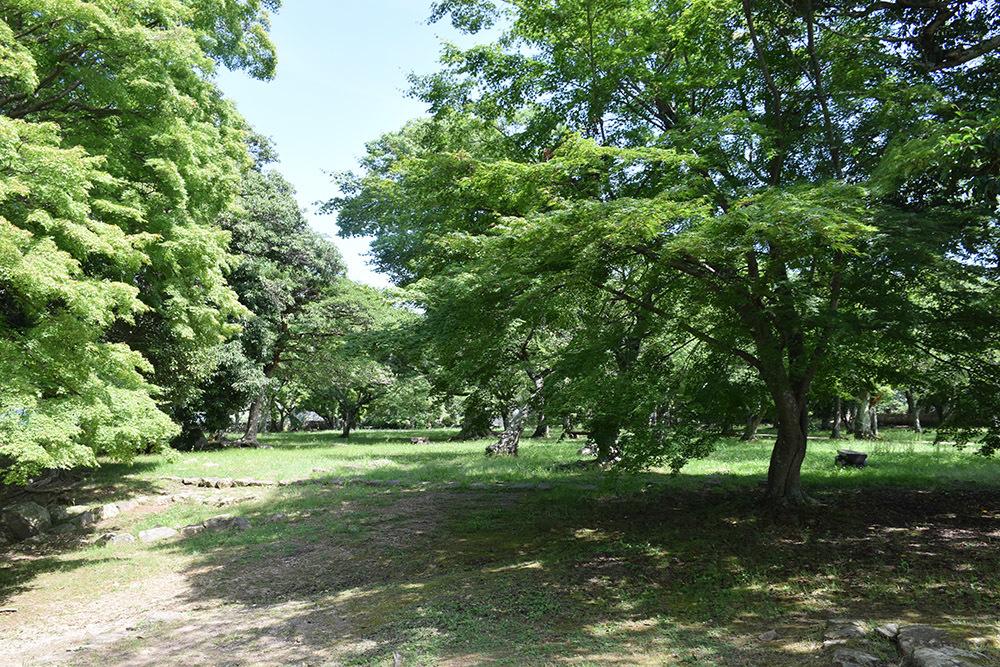 国宝・彦根城を歩く。 その5 <西の丸~出曲輪>_e0158128_17480952.jpg