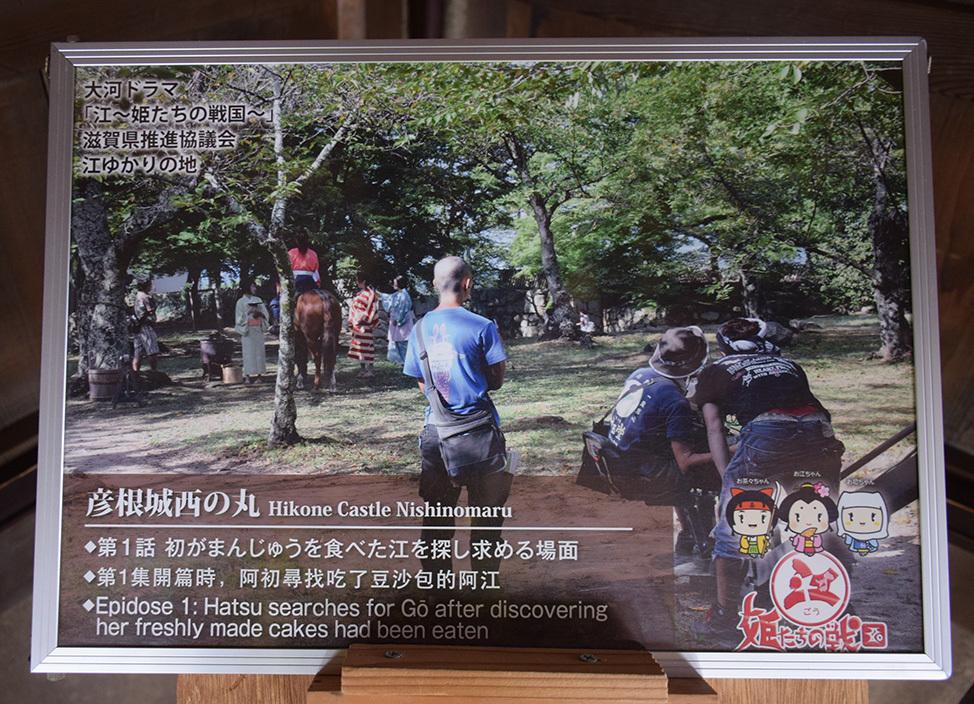 国宝・彦根城を歩く。 その5 <西の丸~出曲輪>_e0158128_18032079.jpg