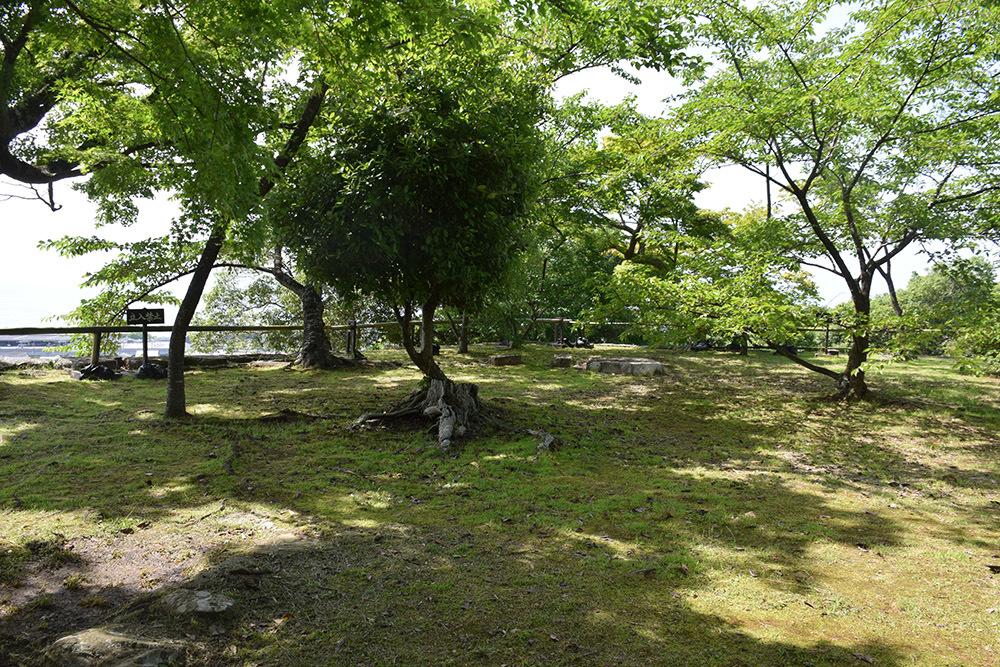国宝・彦根城を歩く。 その5 <西の丸~出曲輪>_e0158128_18124433.jpg