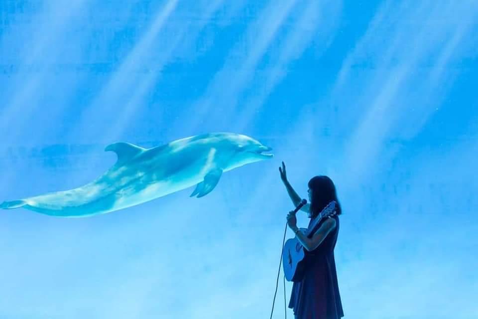 週末のライブ情報!名古屋港水族館と鶴舞公園!_f0373339_13485439.jpg