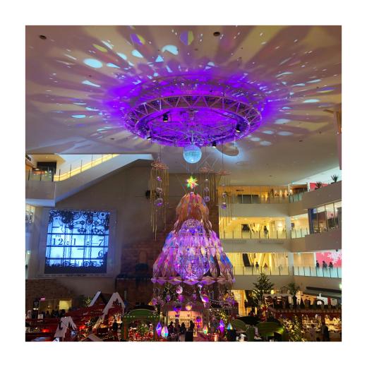 クリスマスとお正月準備_f0156861_14561954.jpg