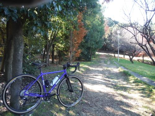 グラベルロードで奈良散歩_b0332867_20553167.jpg