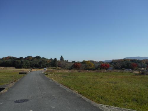 グラベルロードで奈良散歩_b0332867_20561106.jpg