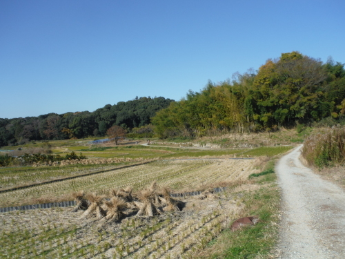グラベルロードで奈良散歩_b0332867_21024283.jpg